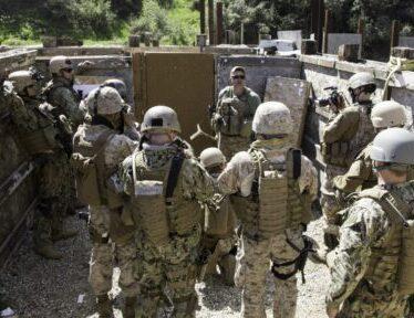 Tactics Training Courses